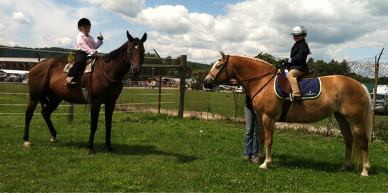 Standardbred Clinic at Steuben Farms