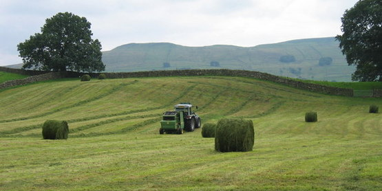 Basic Farm Business Management Planning