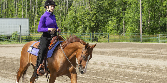 Heidi Phelps participating in a Hemlock Fair Horse Show.