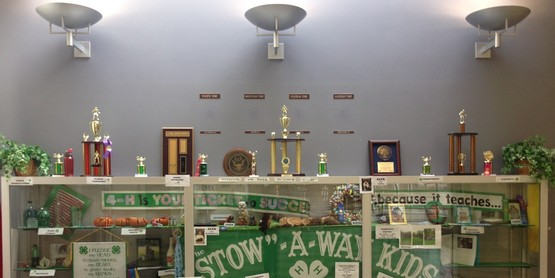 "The ""Stow""-A-Way Kids won the 2015 4-H Window Display contest."