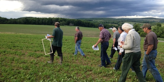 IPM Twilight Meeting at Coons Brothers Farm