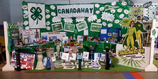 The Canadaway 4-H Club is welcoming new members.  Contact  Heather Lesch at 679-4702