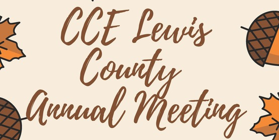2021 CCE Lewis Annual Meeting