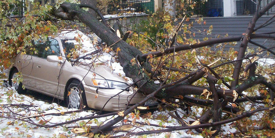 """A car is crushed by a tree limb on Potomac off Elmwood Avenue in Buffalo, New York during the """"Friday the 13"""" snow storm. October 14, 2006."""