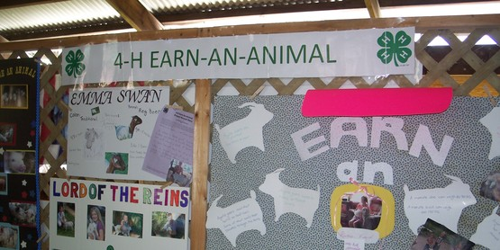 Earn-an-animal Poster