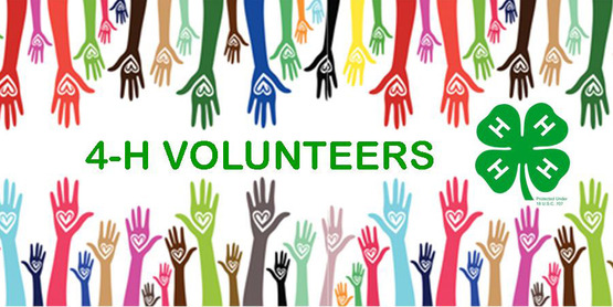 There are lots of opportunities to volunteer with 4-H!