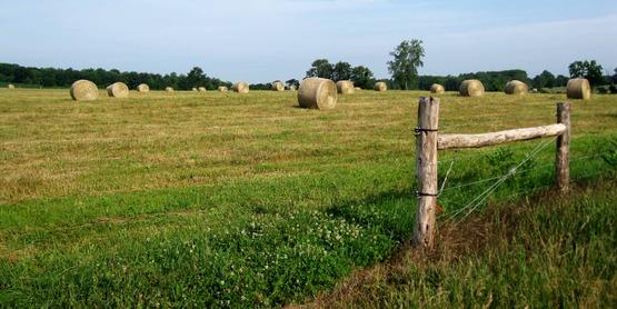 hay field in Ulysses NY
