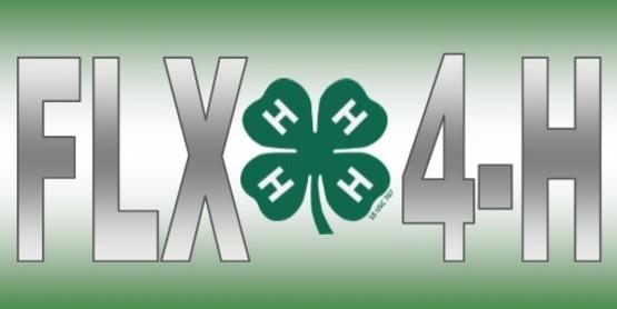 FLX 4-H
