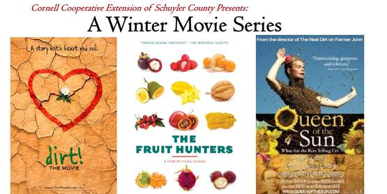 A Winter Movie Series