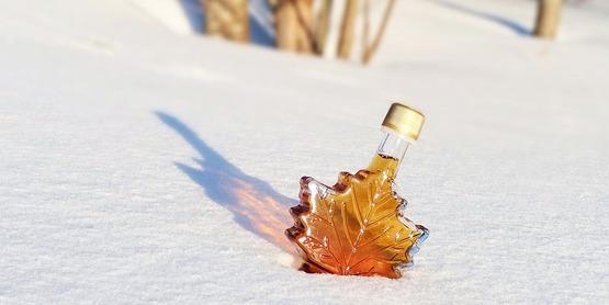 Sugar shack - maple syrup production base