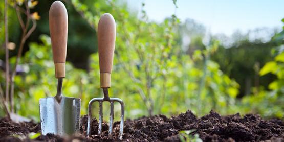 Let's Garden Day!