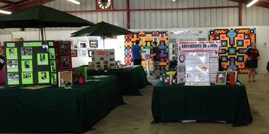 4-H projects on display at the 2017 Fair