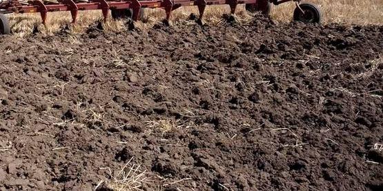close-up photo of soil after tilling