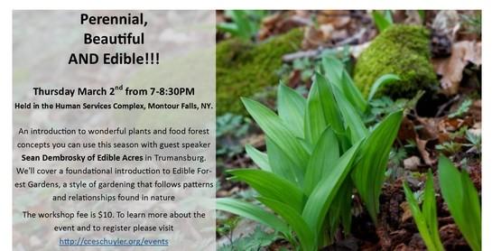 Perennial, Beautiful AND Edible!!