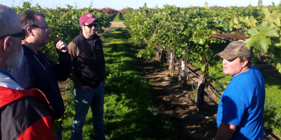 Thom Betts (right) discussing variable rate irrigation systems in a Gallo Wine Co vineyard