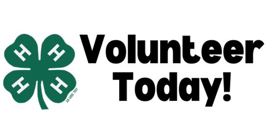 4-H Volunteer
