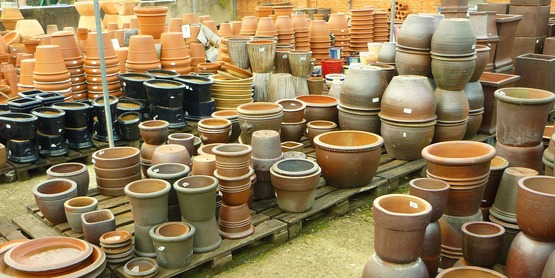 Crops in Pots: Growing Vegetables in Containers