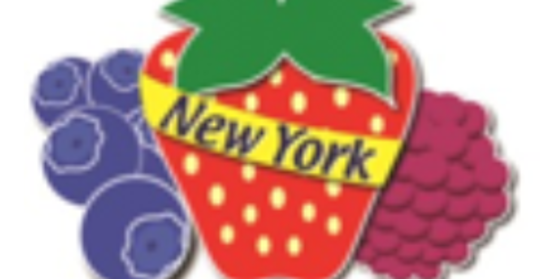 ​New York State Berry Growers Association Winter Regional Workshops