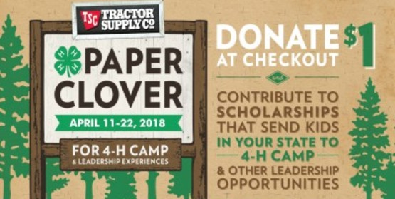 4-H Tractor Supply Company Paper Clover Fundraiser
