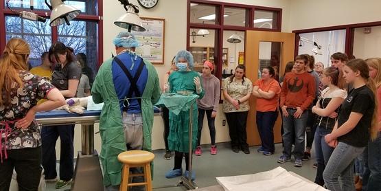4-H Veterinary Science Program