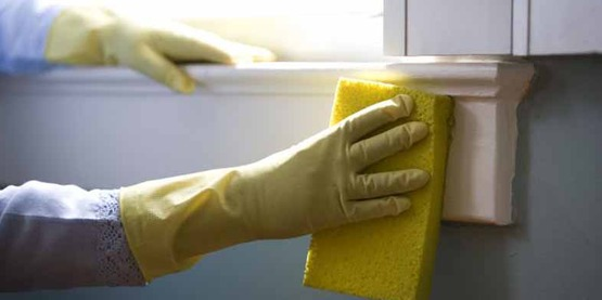 gloved hand with sponge cleaning wall