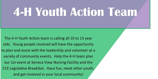 4-H Youth Action Team