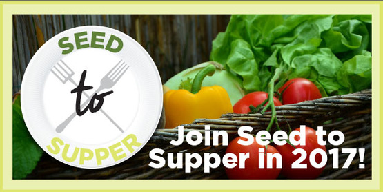 SEED to SUPPER: A Beginner's Guide to Low-Cost Vegetable Gardening