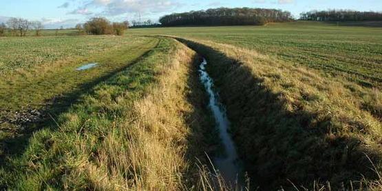 Ditch draining arable land, Bevington Waste UK