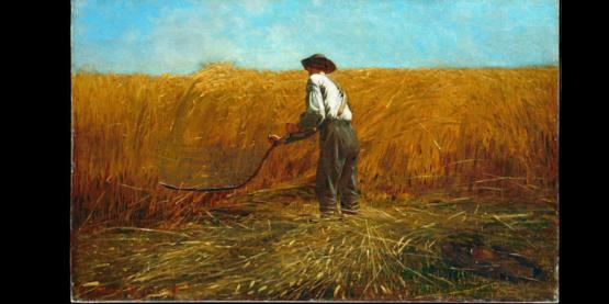 Farm Bureau & CCE Yates Historical Donation