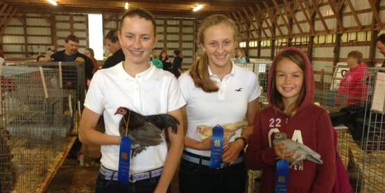 4-H Members at poultry judging