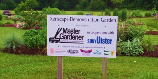 Xeriscape Garden with sign