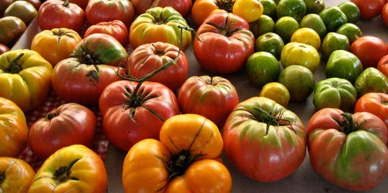 Heirloom tomatoes, photo taken at farmers' market in Ann Arbor, MI