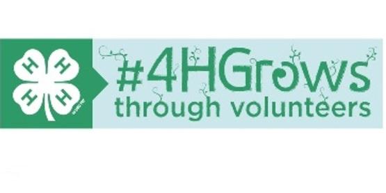 4-H Volunteer e-Forum