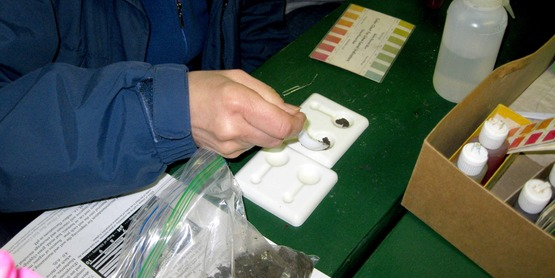 Master Gardener volunteer conducts a pH soil test on a soil sample