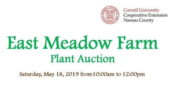 plant auction 2019