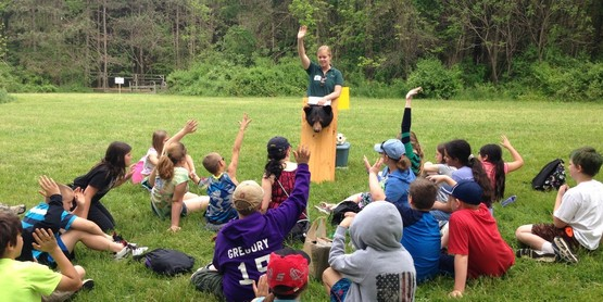 Youth learn about black bears from Allegany State Park staff at Conservation Field Days
