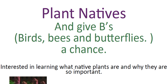 Plant Natives Presentation