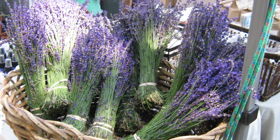 basket of lavender at a farmers' market