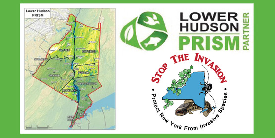 """Cornell Cooperative Extension 