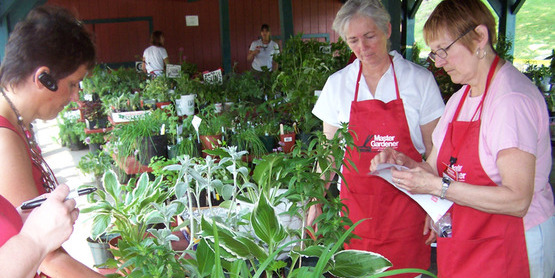 Master Gardener assisting with a purchase at the Master Gardener annual Plant Sale fundraiser.