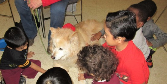 Kids, a dog and lots of love.