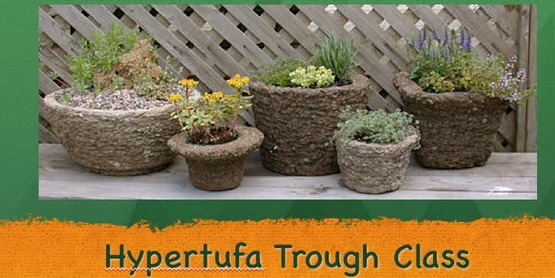 Hypertufa Trough Workshop