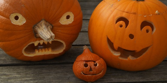 Junior Gardeners: Pumpkin Party!