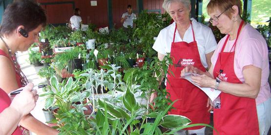 Annual Master Gardener Plant Sale