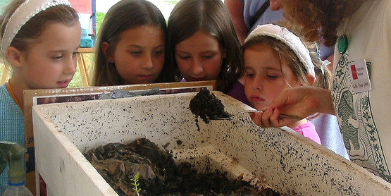 Master composter volunteer (right) shows contents of worm composting bin to Nathalie Smallidge, Stephanie Terwilliger, Annie Seichepin & Adelaide Smallidge at Farm City Day 2005