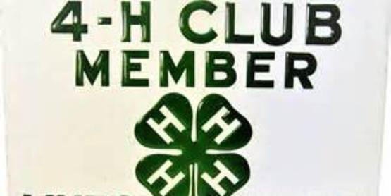 Springdale 4-H Club Opening Meeting