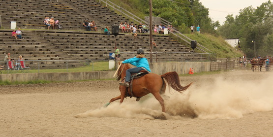 4-H NYS Fair Horse Qualifying Show