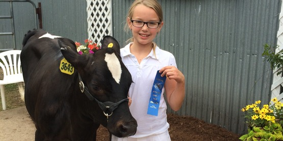 Open Class Dairy and Livestock Entries