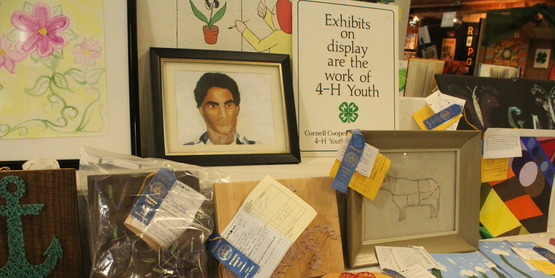 4-H Youth Building Exhibits