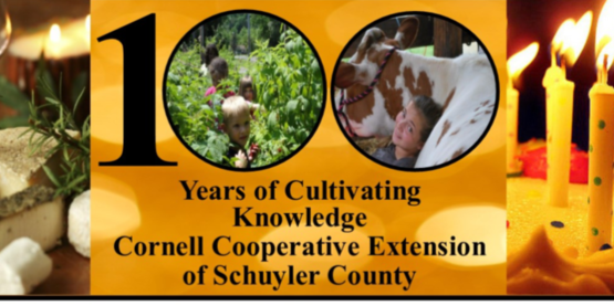 Schuyler County Cooperative Extension Celebrates 100 Years in Schuyler County
